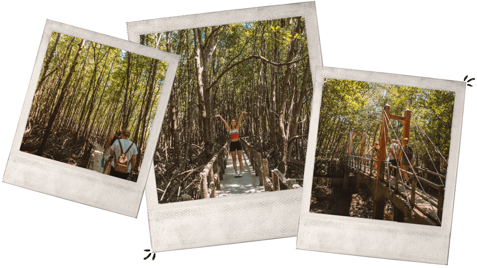 can gio mangrove forest day trip from saigon monkey motorbike roadtrip expat guide