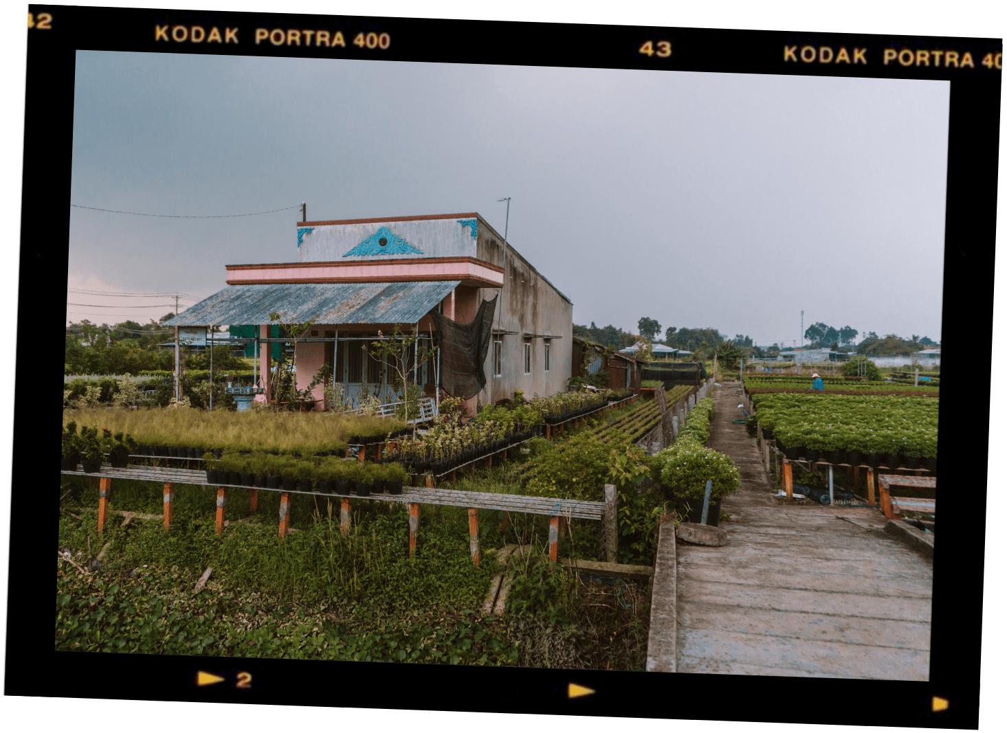 Sa Dec flower village Mekong Delta Vietnam